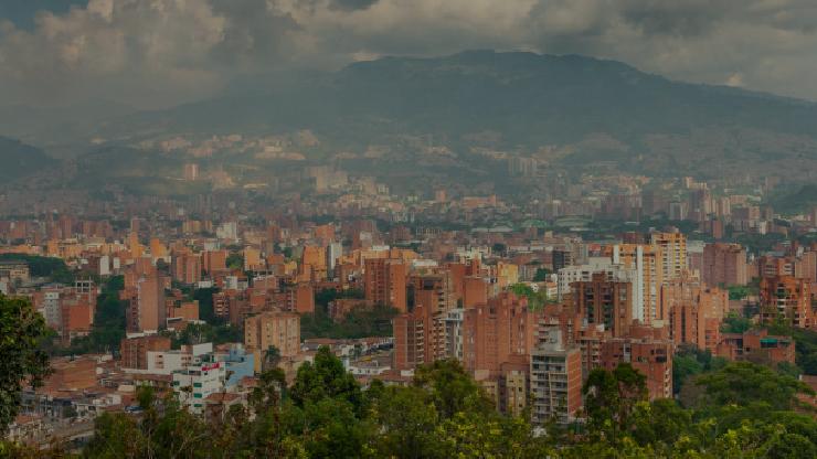 Silvicultura urbana