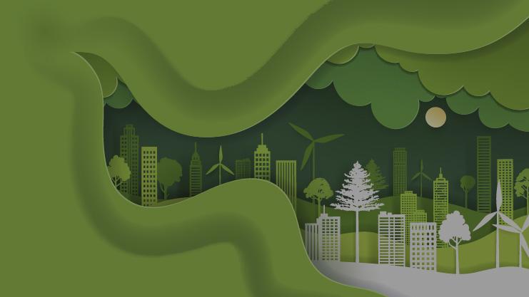 Conectividad ecológica