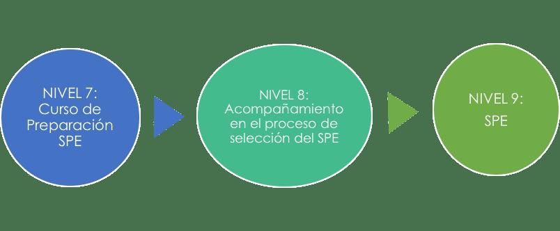 procedimientoSPE