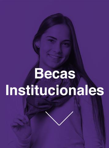 becas institucionales