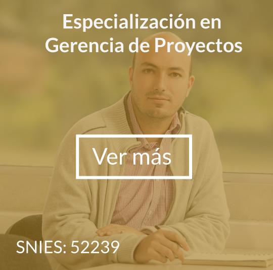 proyectos1